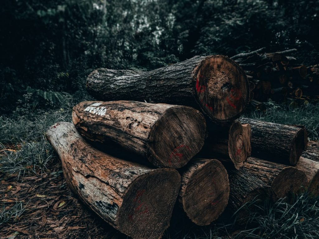 Validated timber through isotope analysis makes it difficult for illegal importing