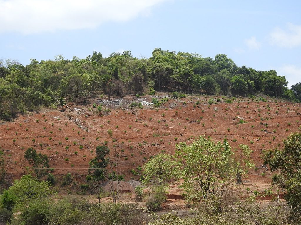 Land conversion from forest to agriculture responsible for deforestation. UK law attempts to prevent this increasing.